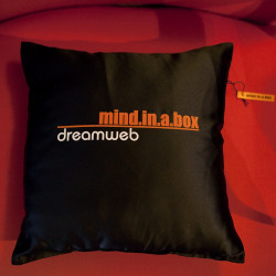 "Pillow ""Dreamweb"""